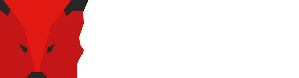Fuchs Transferpressen